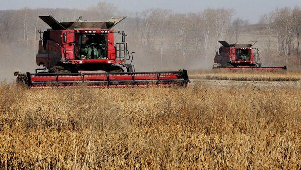 Посебна пажња ће бити посвећена агроиндустријском комплексу који ће добити 54 милијарде како би се домаћим производима заменио увоз хране. - Sputnik Србија