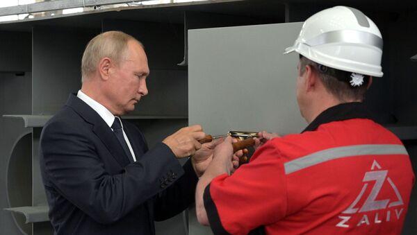 Putin o Vojnoj pomorskoj floti Rusije: Odlučno u odbrani nacionalnih interesa - Sputnik Srbija