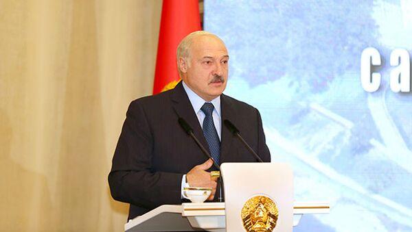 Президент Белоруссии Александр Лукашенко на встрече с активом Витебской области - Sputnik Србија