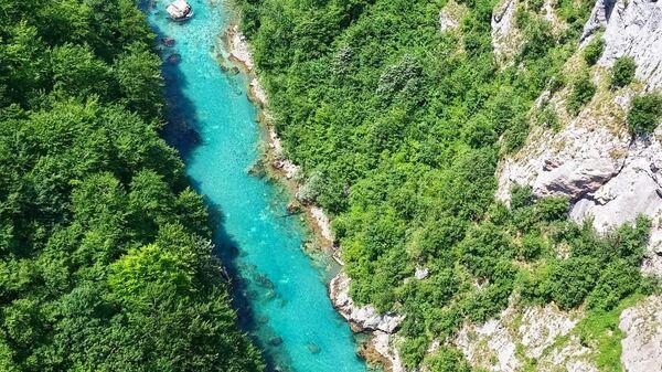 Река Тара - Sputnik Србија