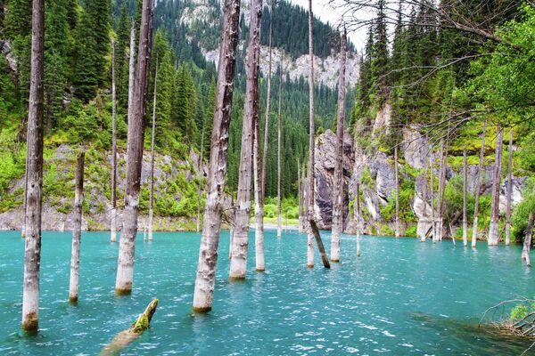 Језеро Каинди у клисурама Кунгеј Алатау, Казахстан - Sputnik Србија