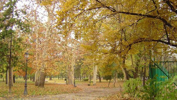 Gradski park Zemun - Sputnik Srbija