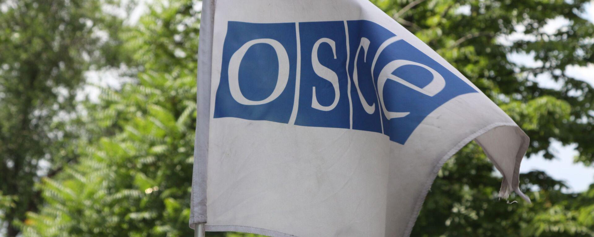 OEBS: Spremni smo da pomognemo Belorusiji, specijalna sednica u petak - Sputnik Srbija, 1920, 04.08.2021