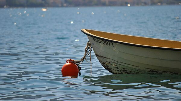 Чамац у Которском заливу - Sputnik Србија