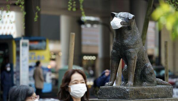 Статуа верног јапанског пса Хачико, Токио - Sputnik Србија