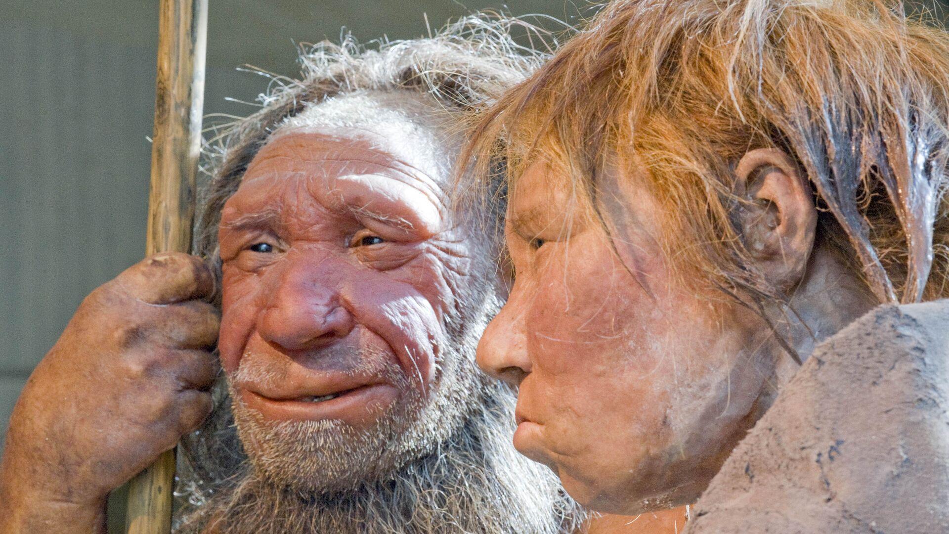 Neandertalci  - Sputnik Srbija, 1920, 02.08.2021