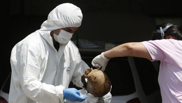 Tela pronađena u kontejneru koji je iz Srbije stigao u Paragvaj - Sputnik Srbija