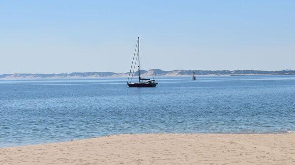 Kosak se nalazi na obali Zapadne Australije - Sputnik Srbija