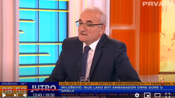 Tarzan Milošević - Sputnik Srbija