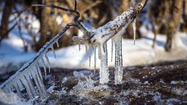Лед, река - Sputnik Србија
