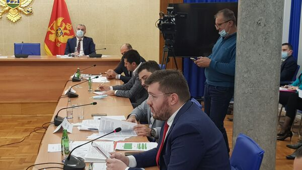 Zakonodavni odbor Skupštine Crne Gore - Sputnik Srbija