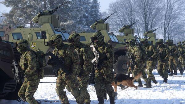 Припадници 72. бригаде за специјалне операције Војске Србије. - Sputnik Србија