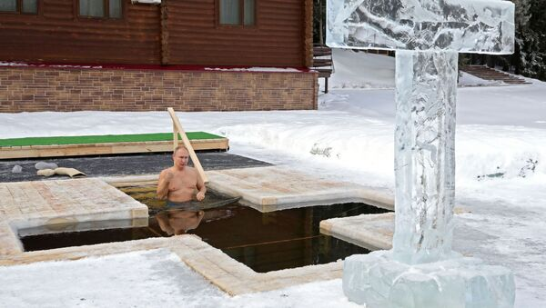 Predsednik Rusije Vladimir Putin zaranja u ledenu vodu na Bogojavljenje - Sputnik Srbija