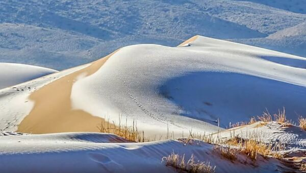 Sneg u Sahari - Sputnik Srbija