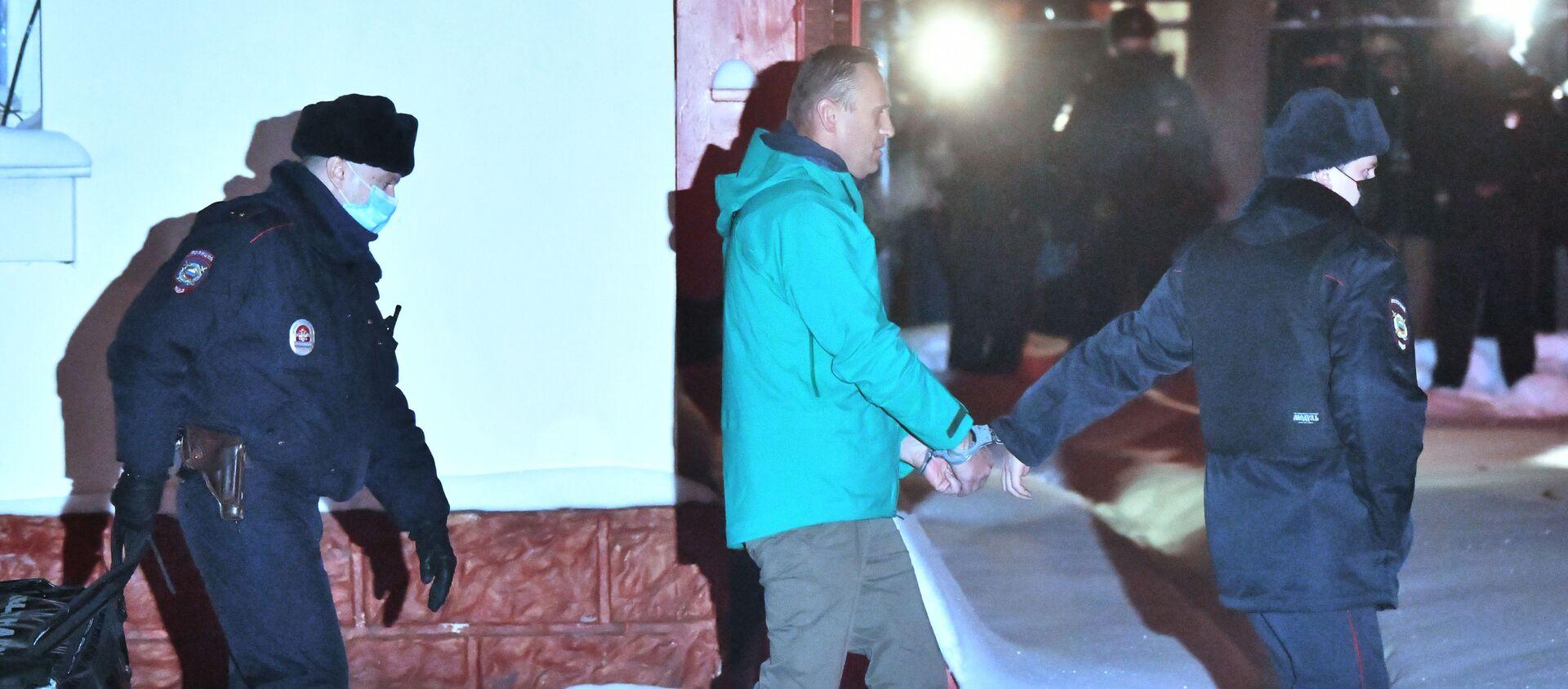 Pripadnici policije sprovode ruskog blogera Alekseja Navaljnog - Sputnik Srbija, 1920, 21.01.2021