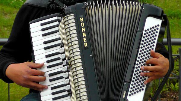 Harmonikaš sa harmonikom - Sputnik Srbija