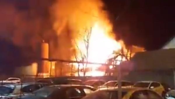 Požar u Novom Sadu - Sputnik Srbija