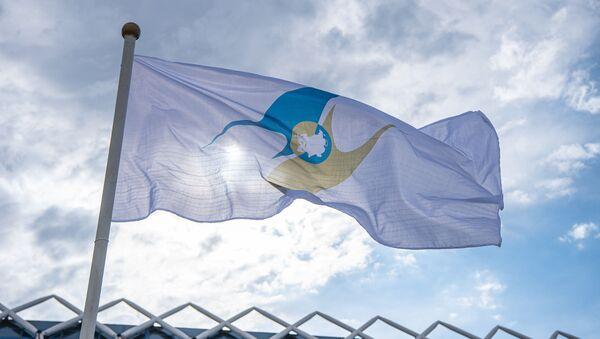 Застава са симболом Евроазијске економске уније - Sputnik Србија