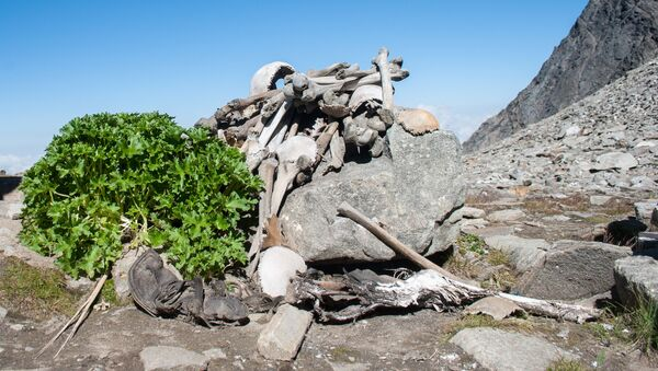 Ljudske kosti u jezeru Ropkund na Himalajima - Sputnik Srbija