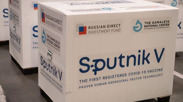 Pakovanja ruske vakcine protiv kovida Sputnjik Ve - Sputnik Srbija