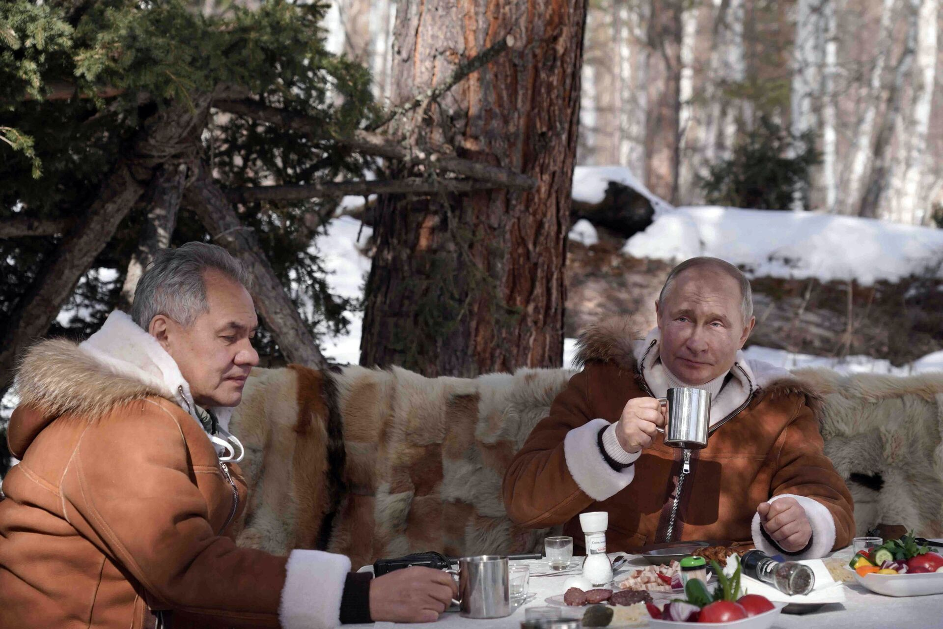 Ни речи од Бајдена – нема проблема: Путин повео Шојгуа у пустоловину по Сибиру /видео/ - Sputnik Србија, 1920, 21.03.2021