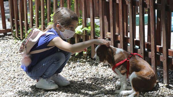 Девојчица и пас - Sputnik Србија
