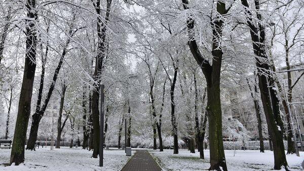 Април под снежним покривачем - Sputnik Србија