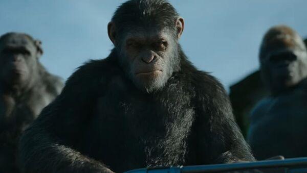 """Scena iz filma """"Planeta majmuna: Rat"""" - Sputnik Srbija"""