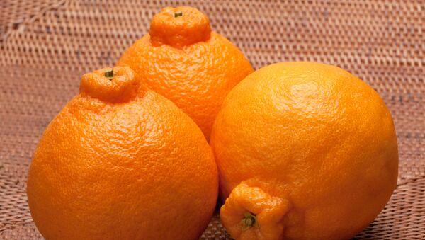 Sumo narandže - Sputnik Srbija