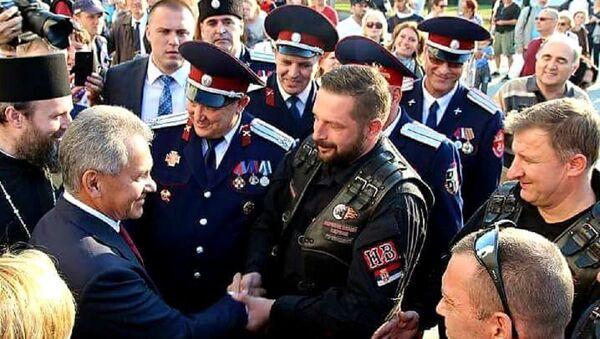 Saša Savić i Sergej Šojgu - Sputnik Srbija