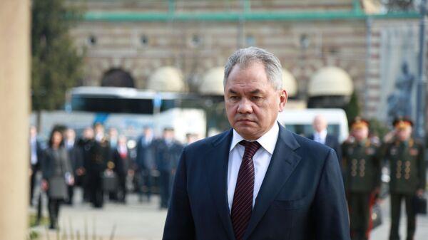 Ruski ministar  odbrane Sergej Šojgu - Sputnik Srbija