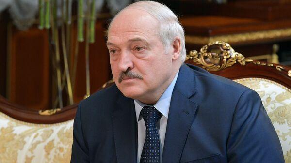 Prezident Belorussii Aleksandr Lukašenko  - Sputnik Srbija