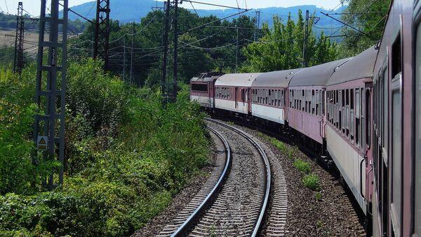 Воз на железничкој прузи - Sputnik Србија