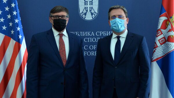 Nikola Selaković i Metju Palmer - Sputnik Srbija