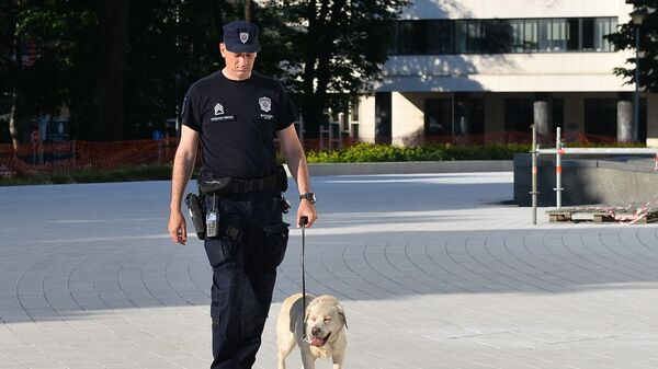 Policijski pas  i njegov vodič - Sputnik Srbija