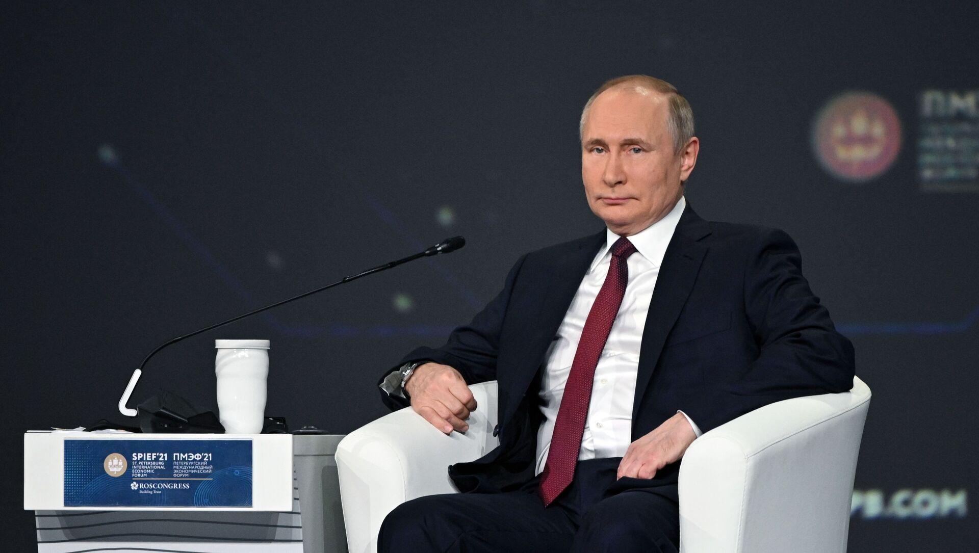Председник Русије Владимир Путин на Међународном економском форуму у Санкт Петербургу - Sputnik Србија, 1920, 04.06.2021