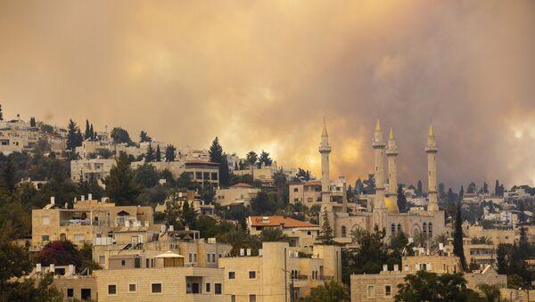 Пожар у предграђу Јерусалима - Sputnik Србија