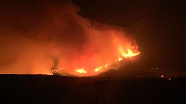 Šumski požar u SAD - Sputnik Srbija