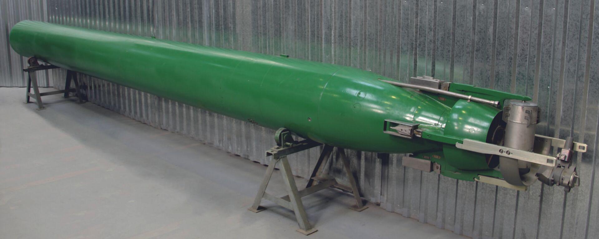 Univerzalna samonavođena torpeda (UGST) Fizik - Sputnik Srbija, 1920, 27.06.2021