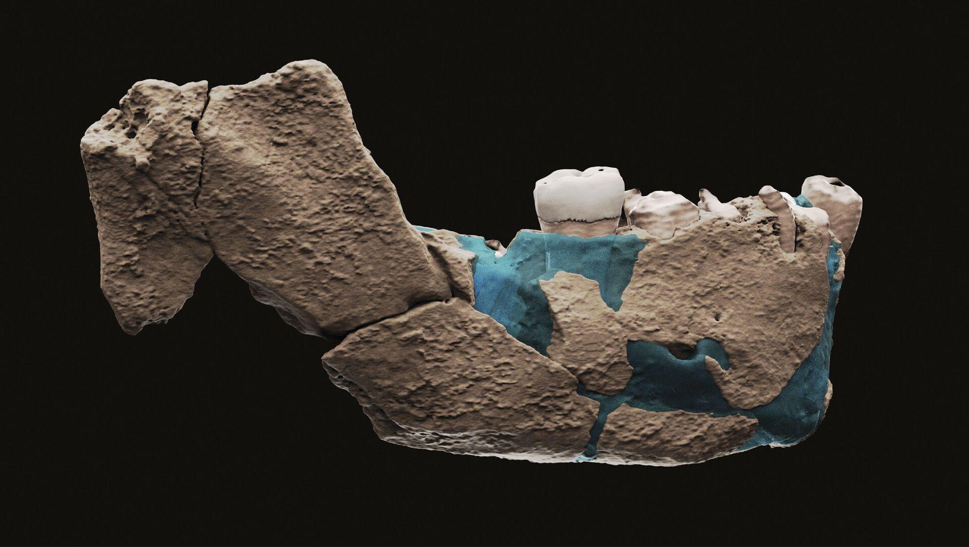 Ostaci nađeni na arheološkom nalazištu Nešer Ramla u Izraelu - Sputnik Srbija, 1920, 25.06.2021