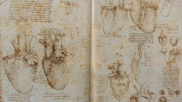 Цртеж срца и крвних судова Леонардо Да Винчи - Sputnik Србија