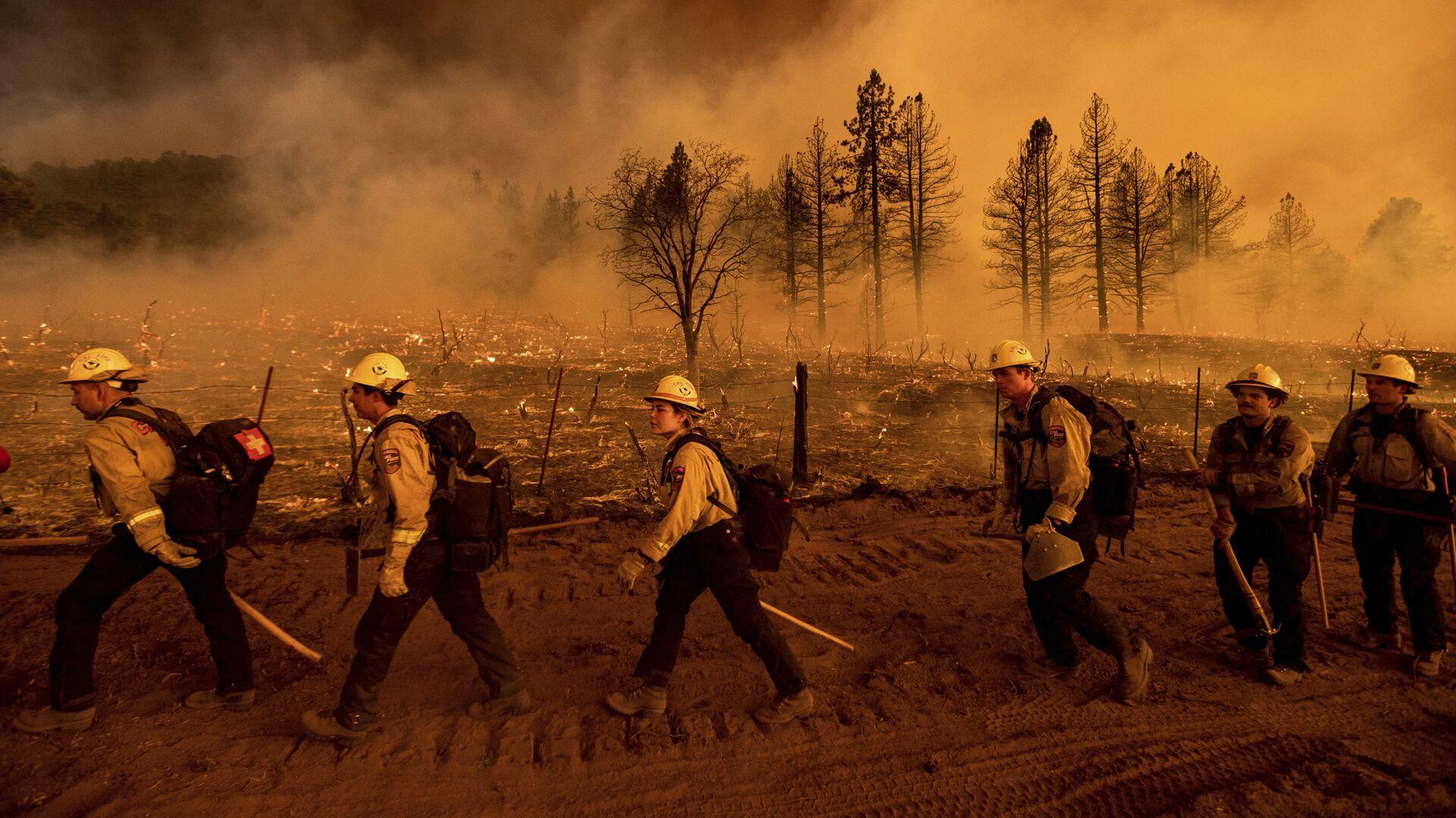 Požari u Kaliforniji - Sputnik Srbija, 1920, 10.07.2021