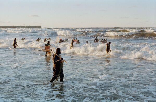 """Аутор – Генадиј ПриходкоЋилибар је највећа вредност Калињинградске области. Ископавање је забрањено, али је могуће скупљање """"морских суза"""" након олује која моћни таласи подижу камење са дна и избацују на обалу. Како каже фотограф, тада се појављују """"ловци на ћилибар"""". - Sputnik Србија"""