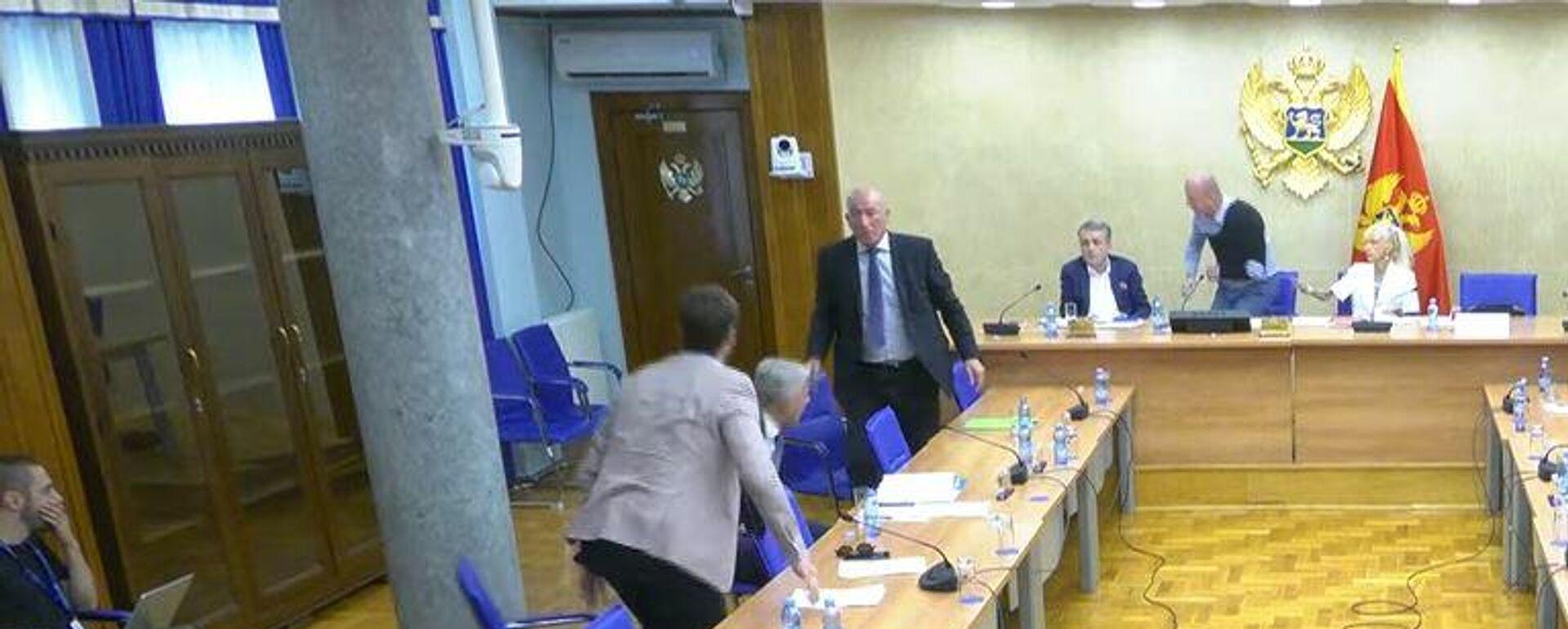 Седница одбора за безбедност - Sputnik Србија, 1920, 30.07.2021