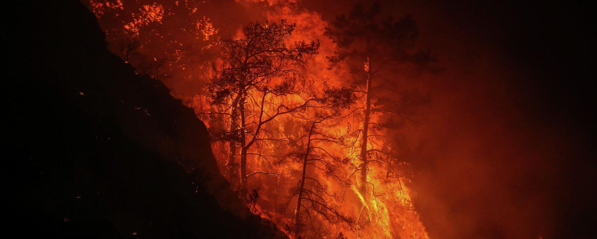 Шумски пожар  - Sputnik Србија, 1920, 04.08.2021