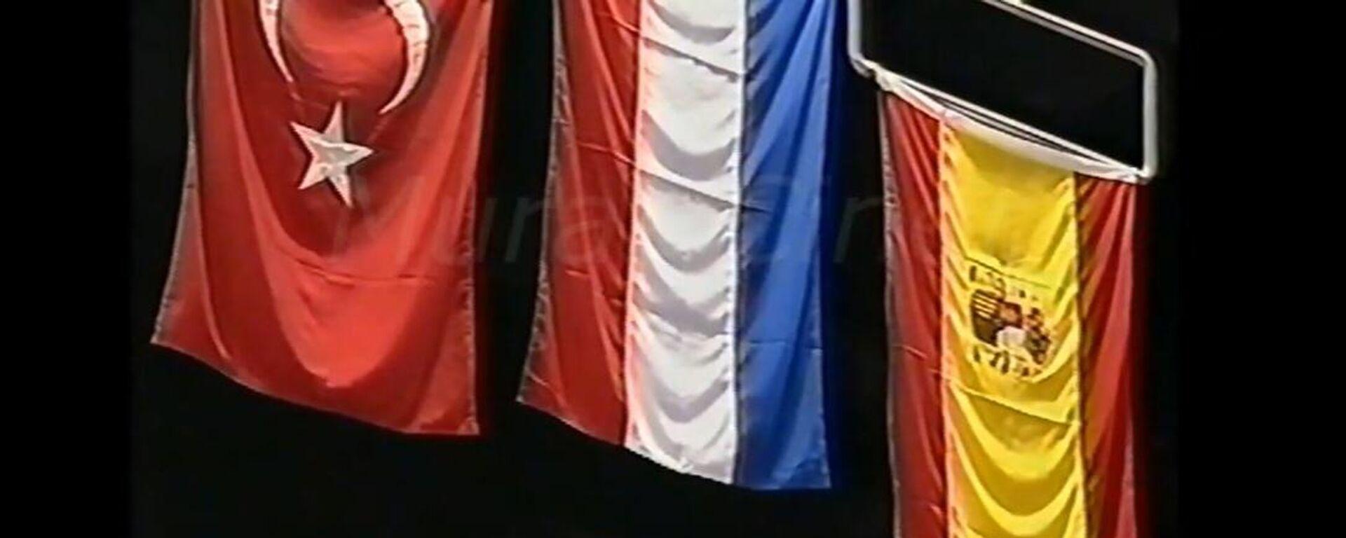 Detalj sa Evropskog prvenstva 2001. - Sputnik Srbija, 1920, 09.09.2021