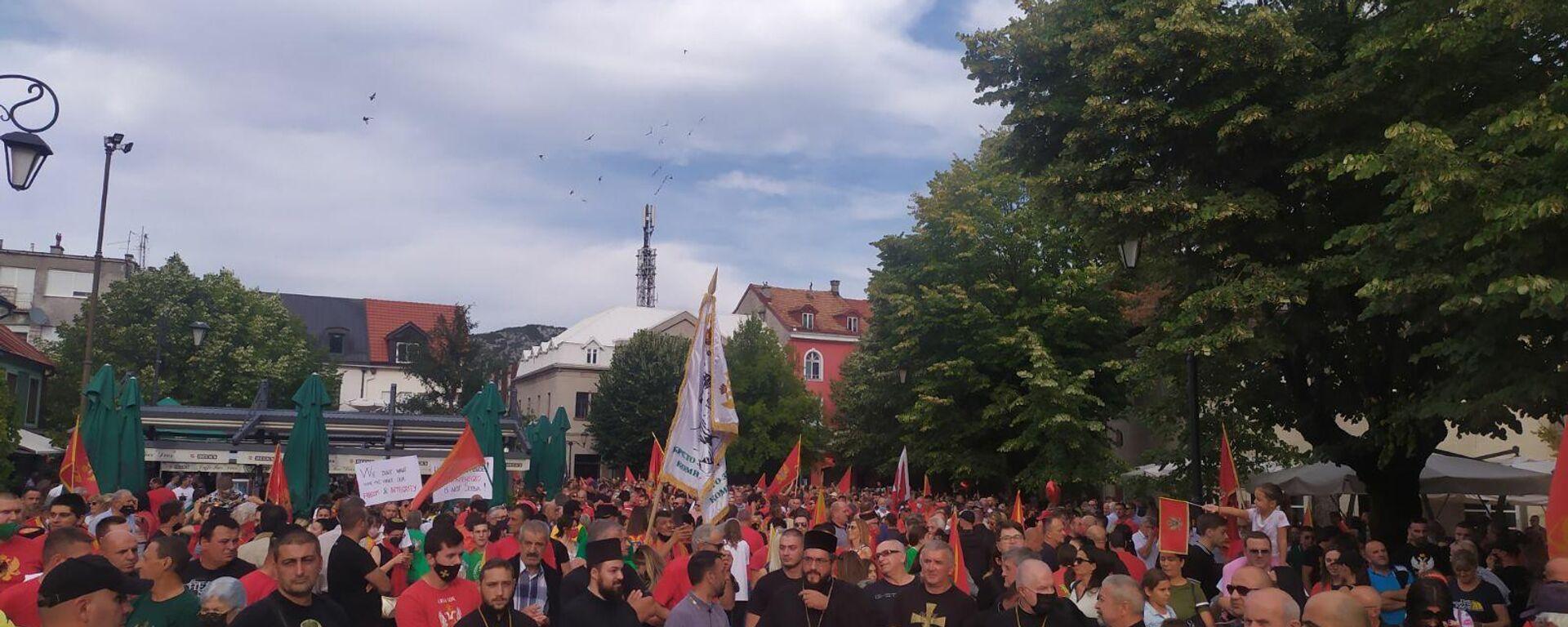 Протест на Цетињу - Sputnik Србија, 1920, 18.09.2021