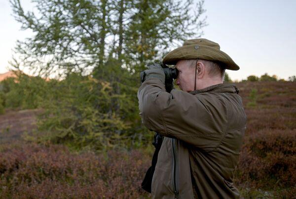 Директор Сајано-шушенског природног резервата показао је председнику медвеђу јазбину. На територији резервата живи око 600 медведа - Sputnik Србија
