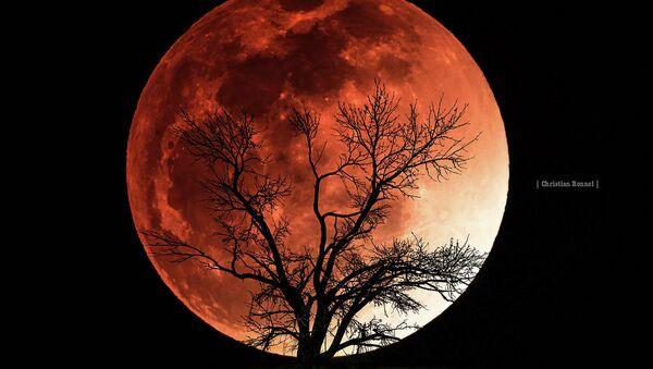 Pomračenje meseca Krvavi mesec - Sputnik Srbija