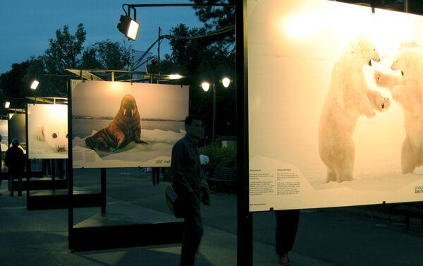 Otvorena izložba fotografija Otkrijmo Arktik na Kalemegdanu - Sputnik Srbija